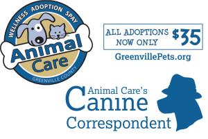 AnimalCare_caninecorrespondence