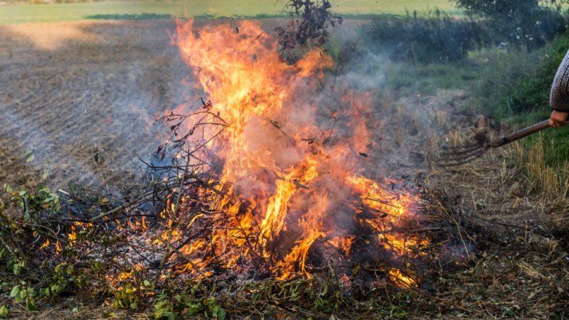 South Carolina burn ban