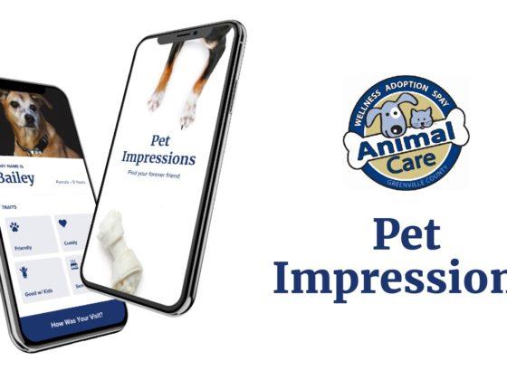 Pet Impressions