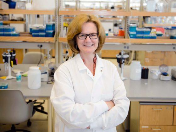 Professor Barbara Campbell in Clemson lab